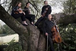 Diogenes Quartett-Vanessa Daly 4