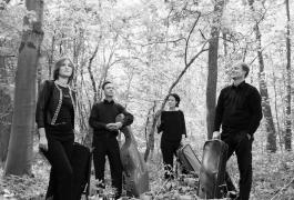 Diogenes Quartett-Vanessa Daly 1SW
