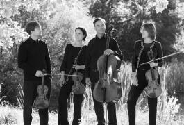 Diogenes Quartett-Vanessa Daly 2SW