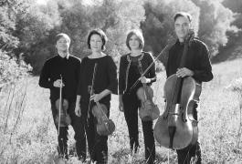 Diogenes Quartett-Vanessa Daly 5SW