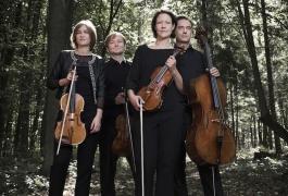 Diogenes Quartett-Vanessa Daly 7